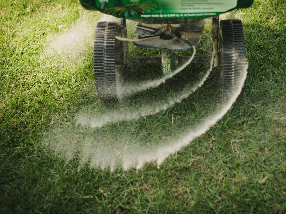 grass fertilization